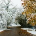 Winter trifft auf Sommer ohne Umweg über Herbst