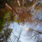 Der Himmel über dem Waldseeplatz aus Fischaugensicht