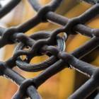 Der EINE Ring (Aus der Serie: Nürnberg, ich komm aus dir)