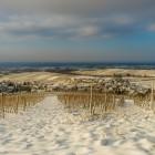 Erster Schnee auf den Weinbergen bei Varnhalt