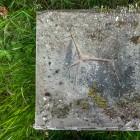 Kunststein am Rande des Haustierfriedhofs