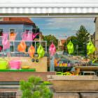 Schau Fenster Blumen Tretter Bretten (aus der Serie: Vorspiegelung falscher Tatsachen)