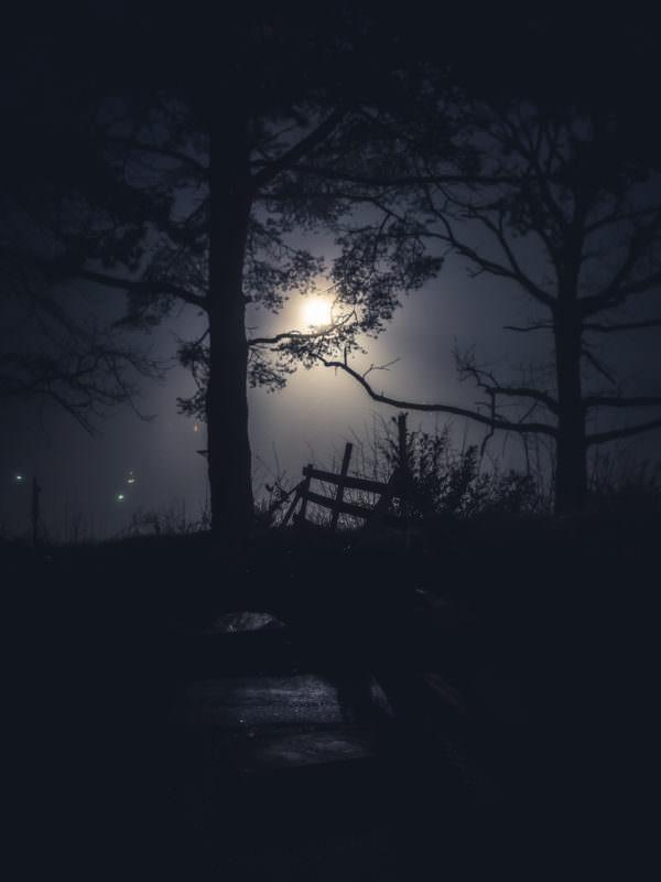 Nebel in den späten 19er und frühen 20er Jahren 04