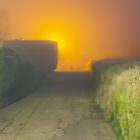 Nebel in den späten 19er und frühen 20er Jahren 17