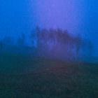 Nebel in den späten 19er und frühen 20er Jahren 23
