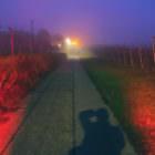 Nebel in den späten 19er und frühen 20er Jahren 26