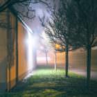 Nebel in den späten 19er und frühen 20er Jahren 31