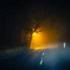 Revisited 1: Golfplatz, nachts, draußen, ein Auto, eine Straßenlaterne  und etwas Nebel
